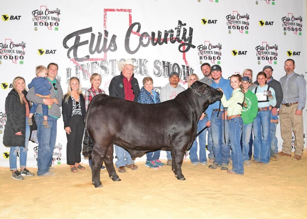 Reserve Champion Market Steer: Kinley Allen, Waxahachie 4-H