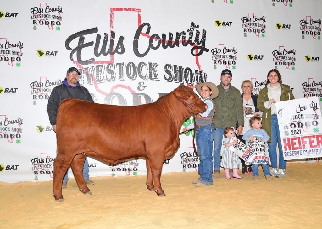 Reserve Champion Breeding Heifer: Truitt Marks, Waxahachie 4-H