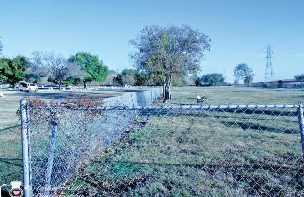 """Unity  in the Community volunteers tore down a chain-link fence separating the white cemetery from the black cemetery. Amber Hall said a little history of the cemetery includes the fact is was once known as the """"colored cemetery,"""" thus the reason for the chain link fence."""