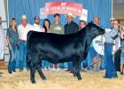 Cameron Luedtke and Grand Champion Owned Female, BAAR USA Wendy.