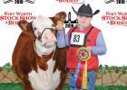 Waxahachie 4-H student Grady Creamer captured Champion Intermediate Heifer and Grand Champion Heifer with HFR Eunicein. Photography by Barron Photografix.
