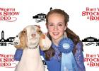 Waxahachie 4-H student Macie Wimbish captured First in Showmanship 14-19 years in the Junior Wether Goat Show. Photography by Barron Photografix.